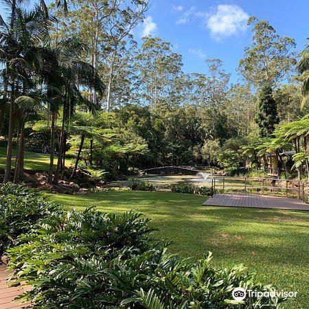 Tamborine Mountain Botanic Gardens1