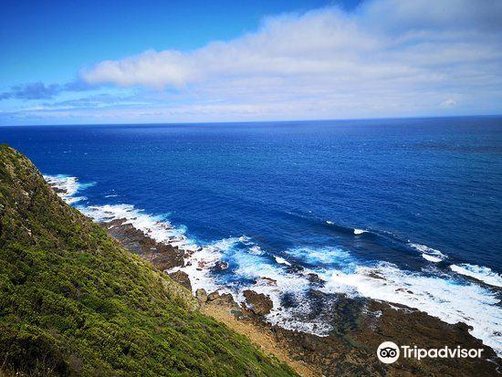 Cape Patton Lookout1
