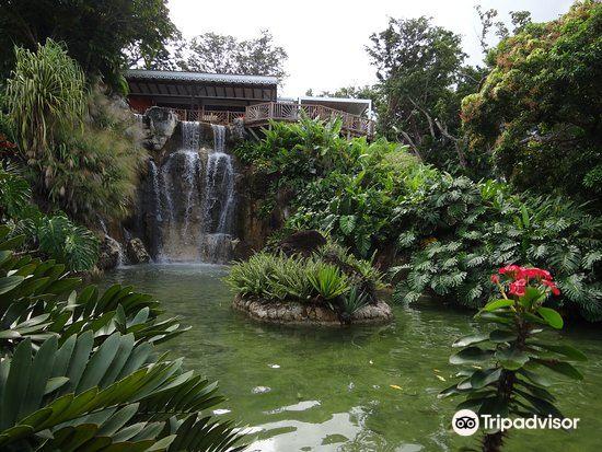 Jardin Botanique de Deshaies4