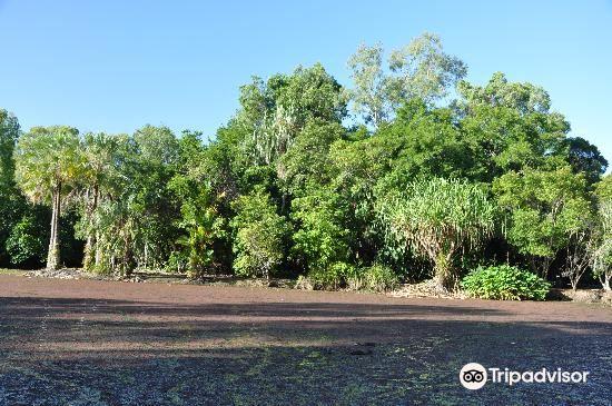 世紀湖植物園4