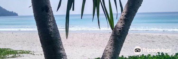 Radhanagar Beach4