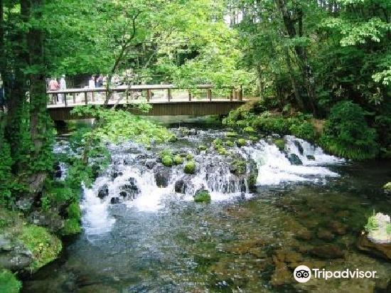 Kyogoku Spring Water Village4