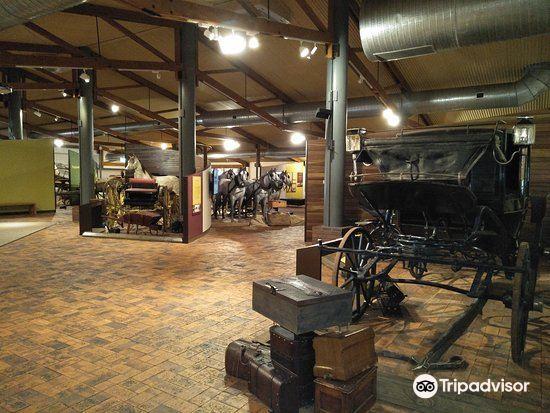 Cobb & Co Museum3