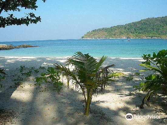 Freedom Beach4