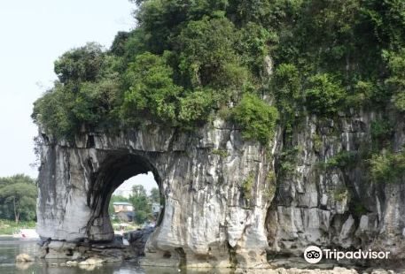 Guilin Botanical Garden