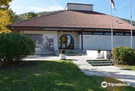 National Museum Arandjelovac