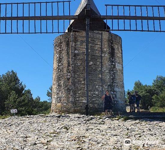 ドーデの風車小屋4
