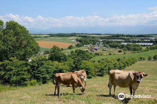 Farms Chiyoda1