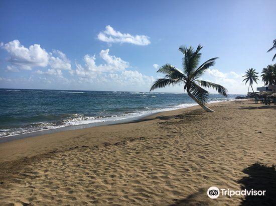 Playa Los Gringos1