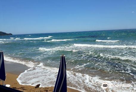 Stabilimento Balneare Aloha