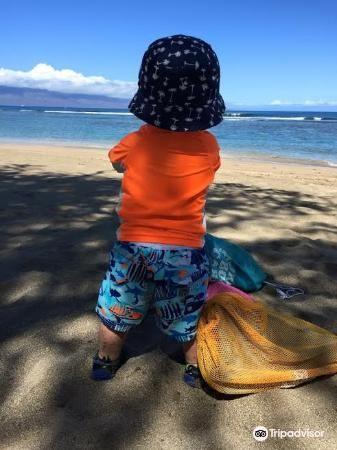 Baby Beach1