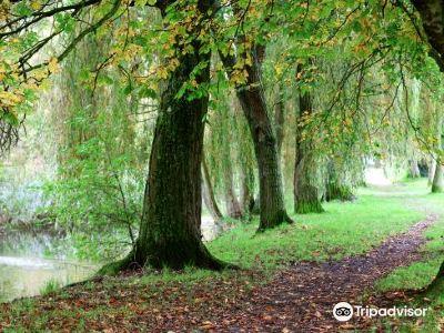 Winnall Moors公園