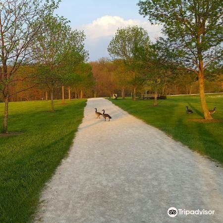 Hudson Springs Park4
