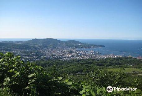 Mount Kenashi Lookout