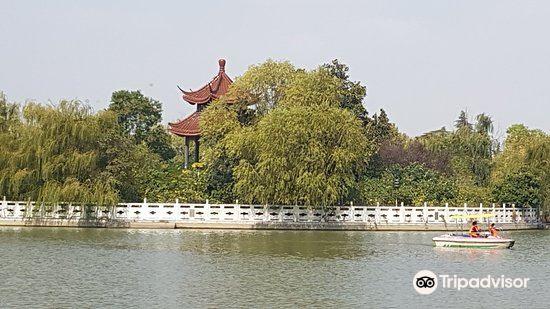 Longhu Park3