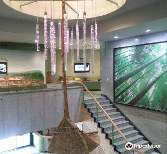 南韓竹子博物館