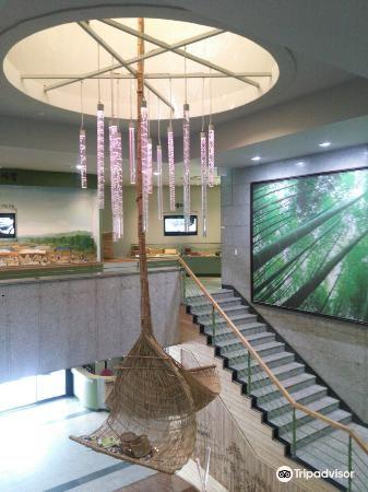 한국대나무박물관1