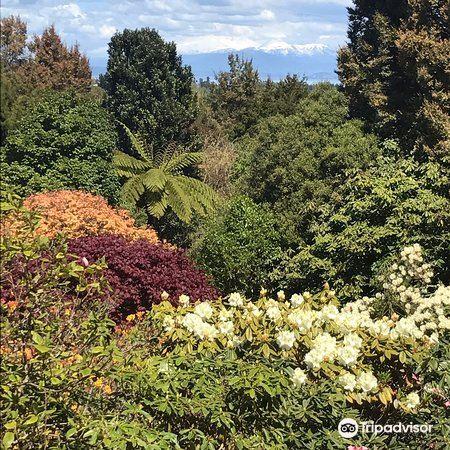 Waipahihi Botanical Gardens4