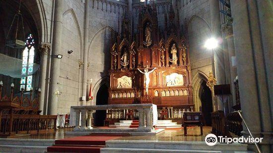 Mar del Plata Cathedral3