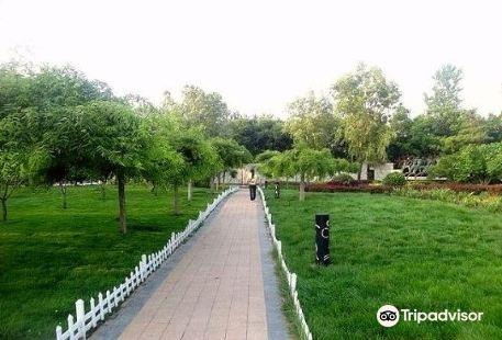 Olympic Avenue Park