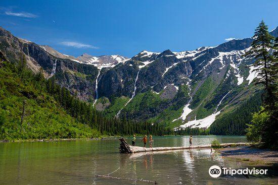Avalanche Lake1