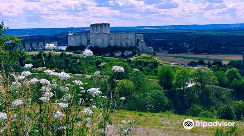 Gaillard Castle