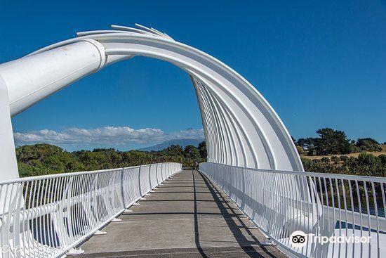 Te Rewa Rewa Bridge3