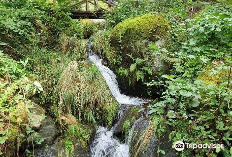 Gaisholl-Wasserfalle
