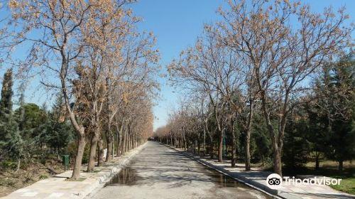 Sami Abdulrahman Park