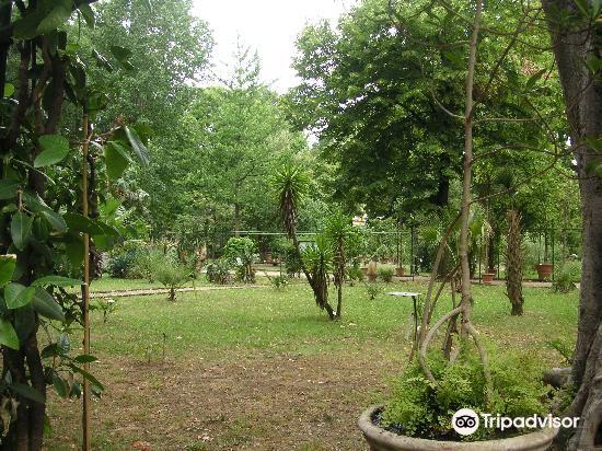 簡潔花園4
