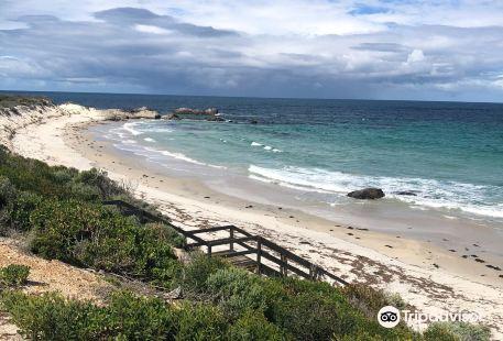 Barrens Beach