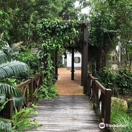Hervey Bay Botanical Gardens3