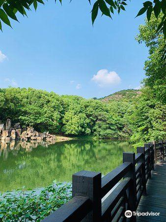 寶岩生態觀光園4