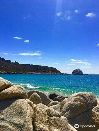Playa El Canelillo1