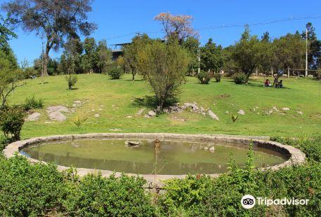 Parque Metropolitano de Santiago - Parquemet