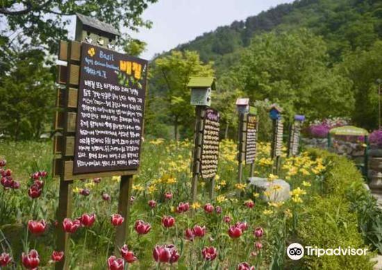 Herbnara Farm2