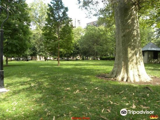 Washington Square Park4