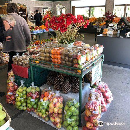 Mrs Jones Fruit Orchard2