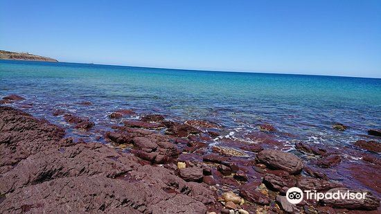 Hallett Cove Conservation Park4
