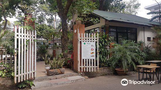 Botanical Gardens (Vuon Bach Thao)4
