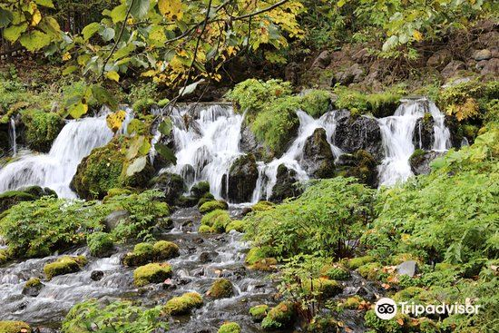 Kyogoku Spring Water Village1