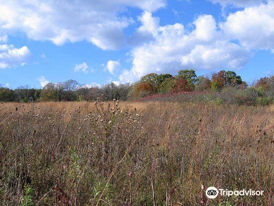 Owens Conservation Park4