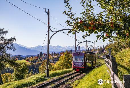 Treno storico del Renon