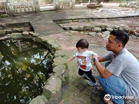 Penang Bird Park4