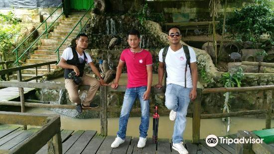 楊氏鱷魚場1
