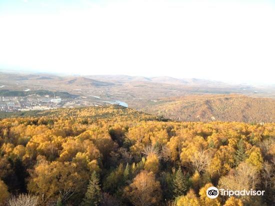 南山森林公園2