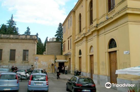 巴勒莫嘉布遺修院地下墓室3
