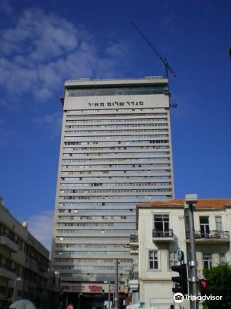 Shalom Tower3