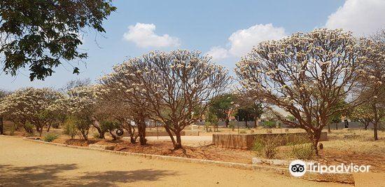 Nyerere Square2
