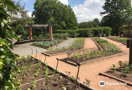 Triton College Botanical Gardens